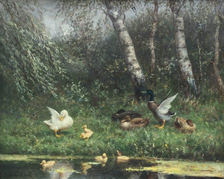 Constant Artz, eendenfamilie aan de waterkant, schilderijen te koop, kunst te koop, expostities, galerie wijdemeren breukeleveen