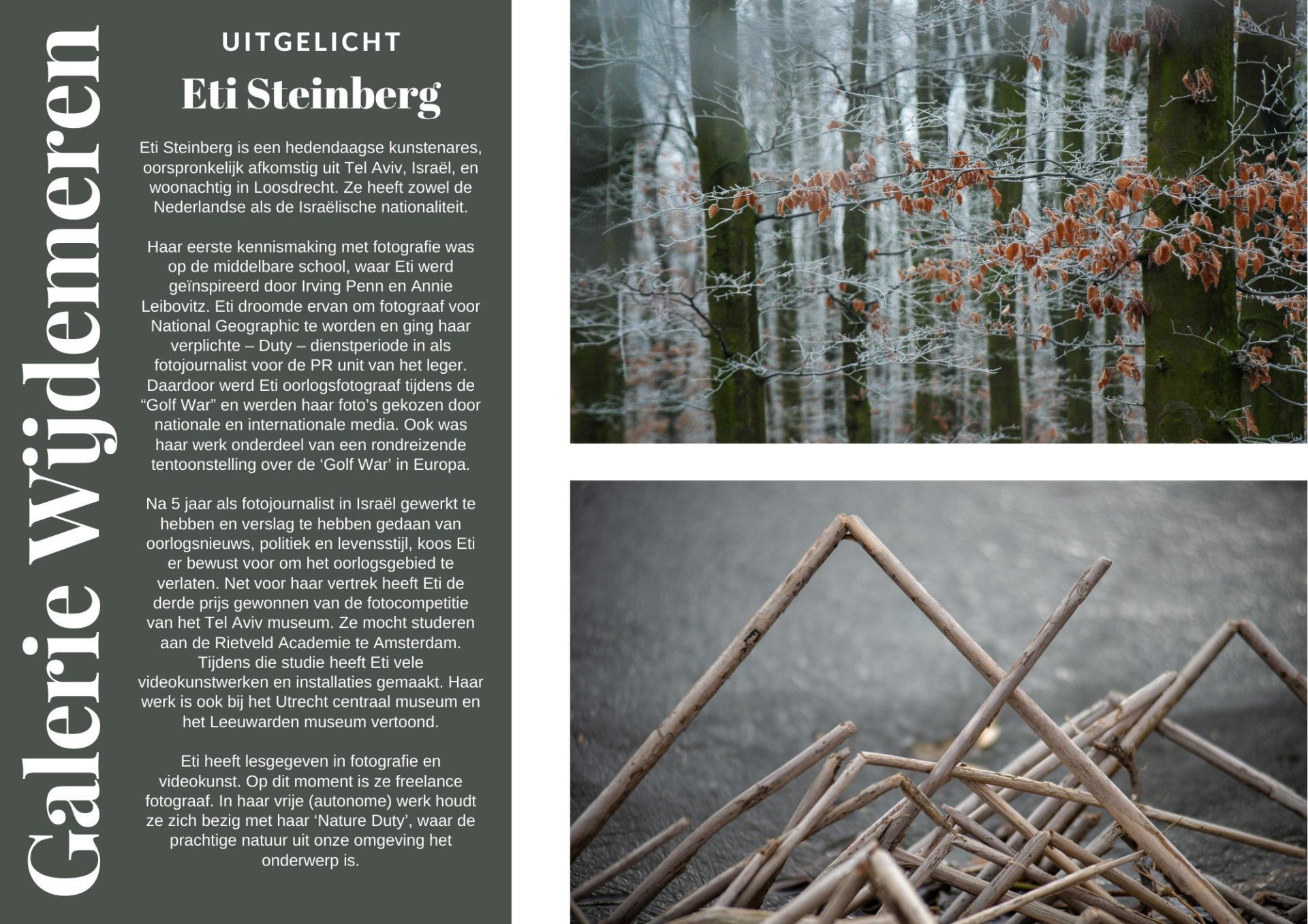 Eti Steinberg, Galerie Wijdemeren