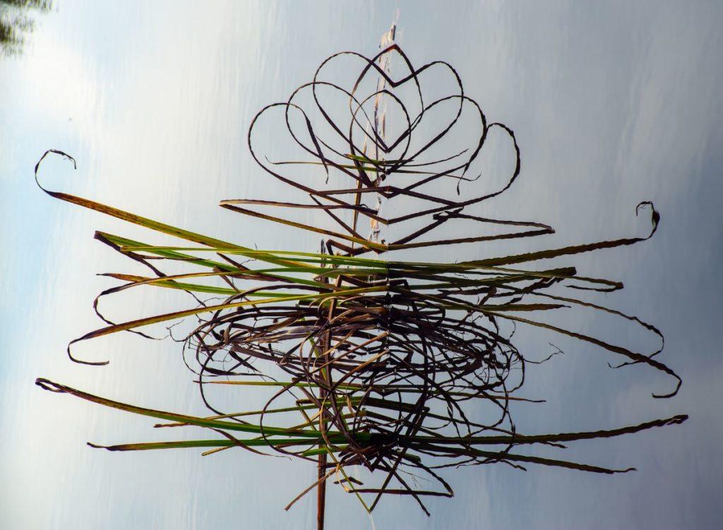 Kunst te koop bij Galerie Wijdemeren van Eti Steinberg Nature Duty - Magneti pearl fotoprint, 19.5 x 27 cm oplage 1/10, verkrijgbaar in diverse formaten