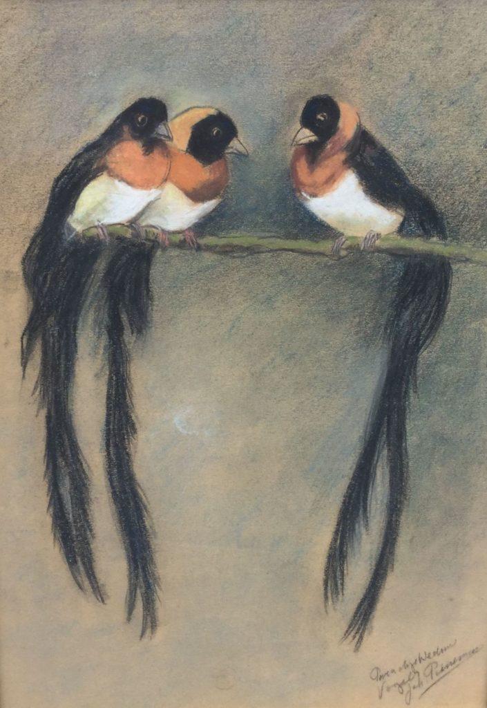 Schilderijen te koop van kunstschilder Johanna Pieneman, Expositie Galerie Wijdemeren Breukeleveen