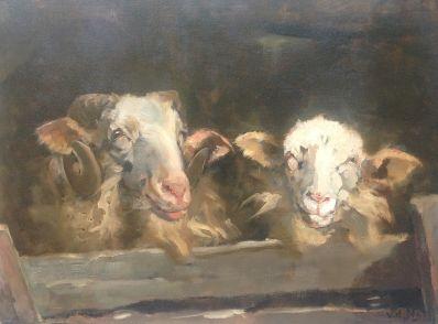 Schilderijen te koop van kunstschilder W.H. van der Nat Schapen op stal olie op doek, doekmaat 45 x 60 cm gesigneerd r.o. v.d. Nat, Expositie Galerie Wijdemeren Breukeleveen