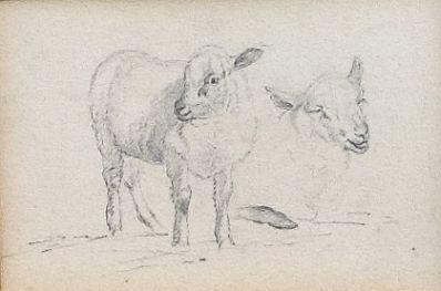 Kunstenaar Willem Verpoeken 6901, Willem Verpoeken