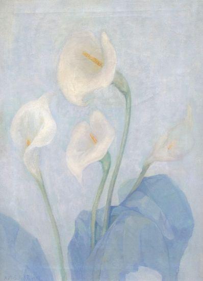 Kunstenaar Adeline Maud van Schaik 8024, Adeline Maud van Schaik - Russel Aronskelk Olie op doek, beeldmaat: 60 x 45 cm