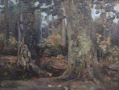 Kunstenaar Jan van Rhijnnen 8767, Jan van Rhijnnen Bosgezicht olie op paneel, 18,5 x 25,5 cm verkocht