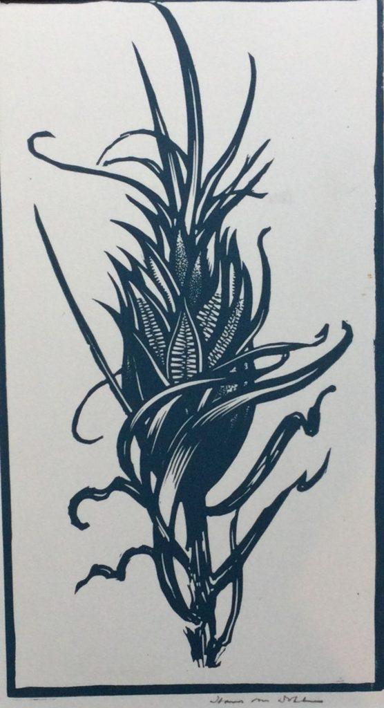 Kunst te koop bij galerie Wijdemeren van graficus Hans van Dokkum Maiskolf linosnede, 23 x 13 cm rechtsonder handgesigneerd, nummer 26