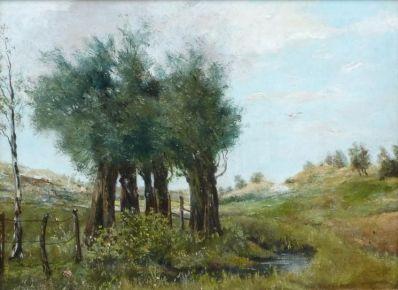 Kunstenaar Willem Spronken A6205, W. Spronken Duinstreek achter Eijkenduinen olie op paneel 26 x 35 cm, gesigneerd verkocht