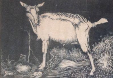 Kunstenaar Jan Mankes A6381, Jan Mankes Geitje Ets l.o. gesigneerd verkocht