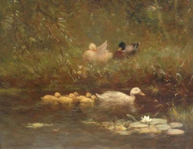 Schilderijen te koop van kunstschilder Constant Artz Eenden aan de waterkant olieverf op paneel, 39 x 48 cm, Expositie Galerie Wijdemeren Breukeleveen