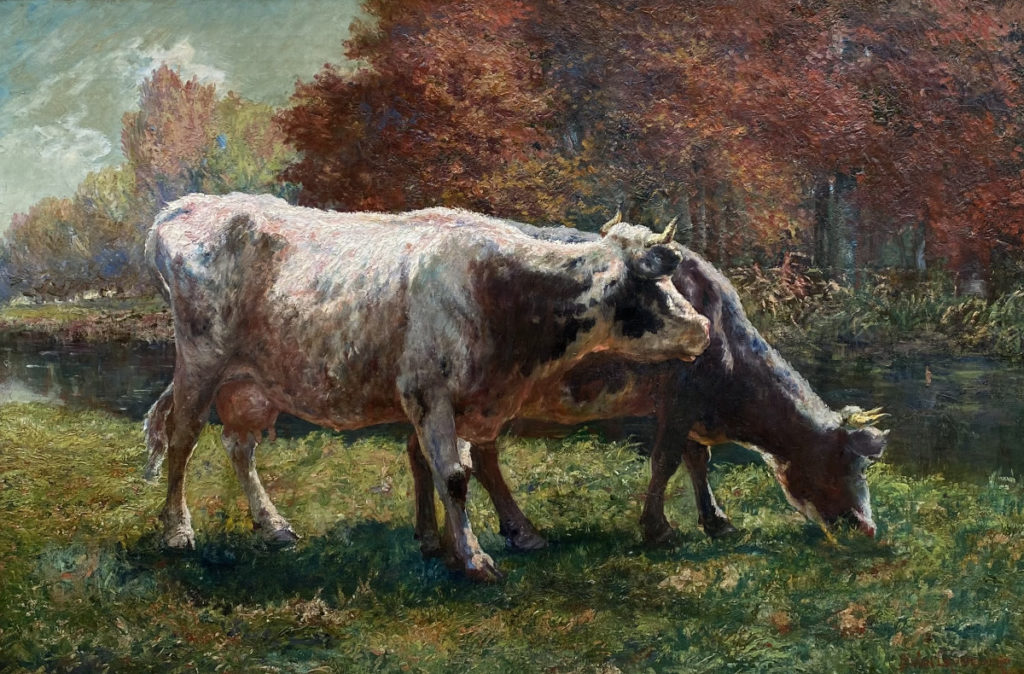 Schilderijen te koop van kunstschilder Jean Emile van Cauwelaert Koeien in Weiland olie op doek, gesigneerd,, Expositie Galerie Wijdemeren Breukeleveen