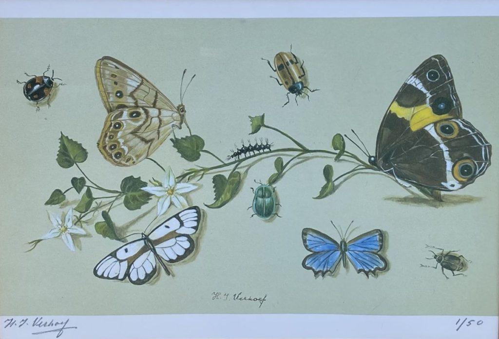 Kunst te koop bij Galerie Wijdemeren van kunstschilder Hans Verhoef Stilleven met vlinders, insecten en bloemen litho, beeldmaat 19 x 27.5 cm linksonder handgesigneerd, rechtsonder oplage 1/50