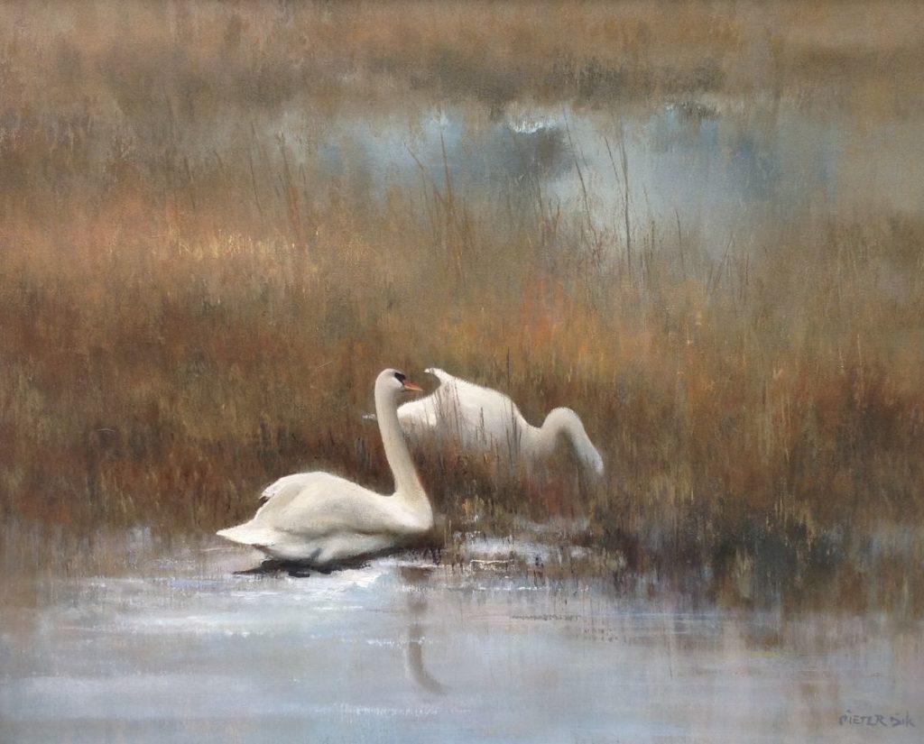 Schilderijen te koop van kunstschilder Pieter Dik Zwanen in rietrijk waterlandschap olie op doek, doekmaat 80 x 100 cm rechtsonder gesigneerd, Expositie Galerie Wijdemeren Breukeleveen