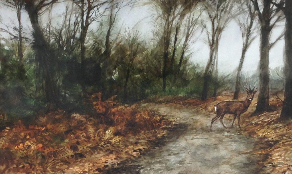 schilderijen te koop van kunstschilder, Rien Poortvliet Hert in bos aquarel, beeldmaat 30 x 44.5 cm rechtsonder gesigneerd, expositie, galerie wijdemeren breukeleveen