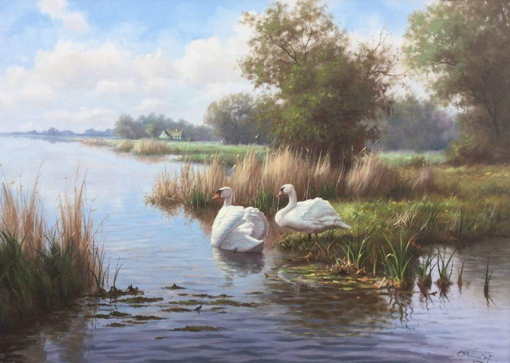 Schilderijen te koop van kunstschilder Ron Meilof Waterlandschap met zwanen olie op doek, 50 x 70 cm rechtsondergesigneerd, Expositie Galerie Wijdemeren Breukeleveen