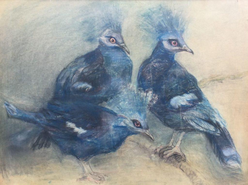 Kunstenaar Johanna Pieneman C3130-1 Johanna Hendrika Pieneman Kroonduiven Pasteltekening, beeldmaat 47,8 x 63 cm l.o. gesigneerd