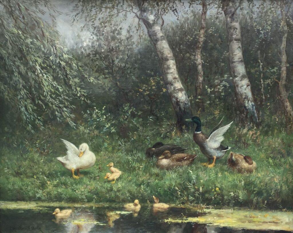Schilderijen te koop van kunstschilder Constant Artz Eendenfamilie aan de waterkant Olie op doek, 41 cm x 51 cm Rechtsonder gesigneerd, Expositie Galerie Wijdemeren Breukeleveen