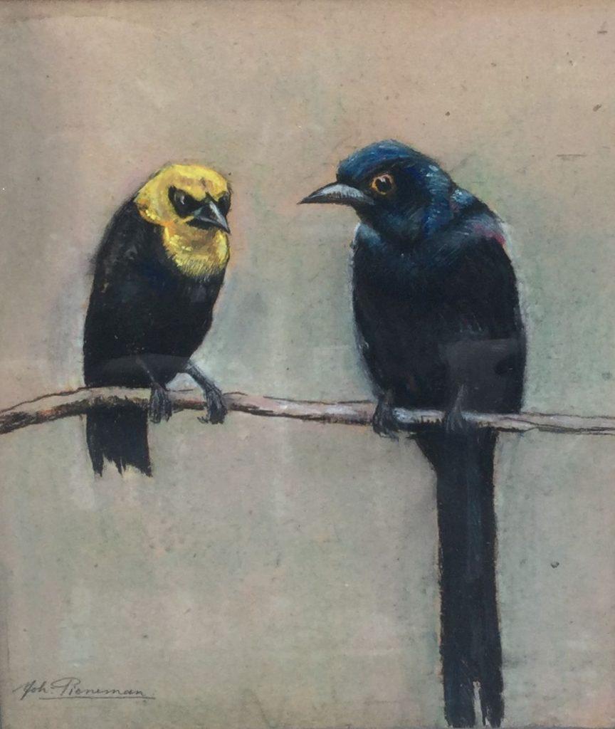 Schilderijen te koop van kunstschilder Johanna Pieneman 2 vogels op een tak Pastel op papier, beeldmaat 27 x 23 cm Linksonder gesigneerd Expositie Galerie Wijdemeren Breukeleveen