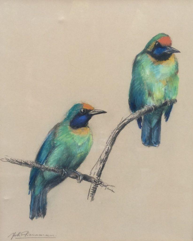 Schilderijen te koop van kunstschilder Johanna Pieneman Twee vogels Pastel op papier, beeldmaat 26 x 21.5 cm linksonder gesigneerd, Expositie Galerie Wijdemeren Breukeleveen