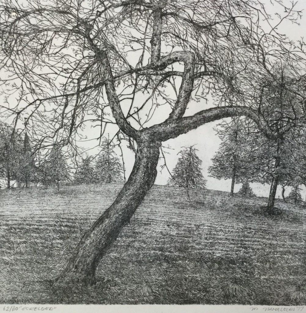 schilderijen te koop van kunstschilder, Jos Hameleers Eckelder ets, opl. 62/80, beeldmaat 37 x 38,5 cm rechtsonder gesigneerd en gedateerd 77, expositie, galerie wijdemeren breukeleveen