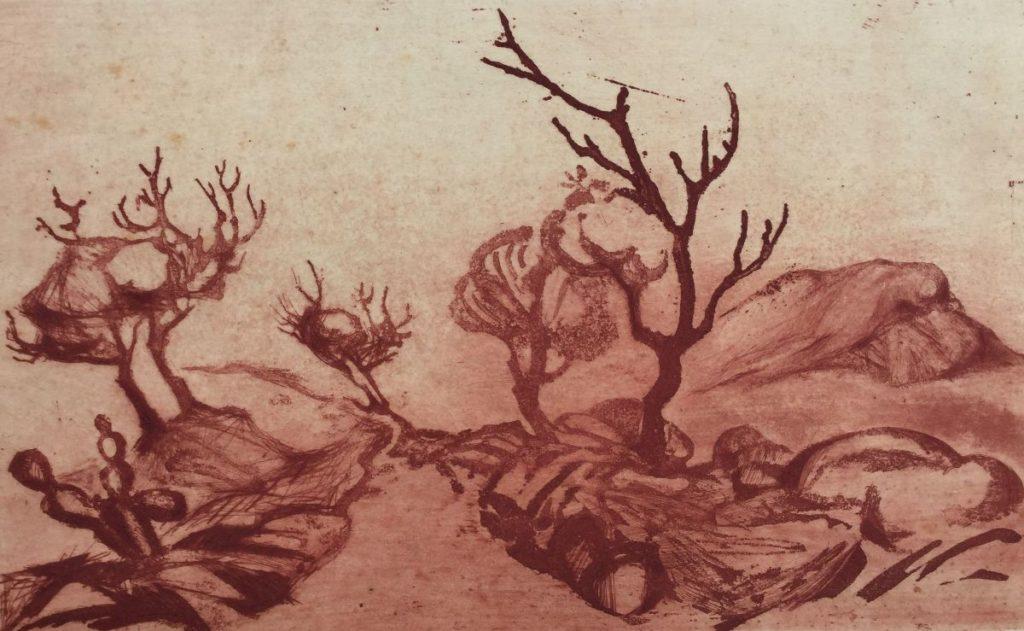 Kunst te koop bij Galerie Wijdemeren van kunstschilder Dick Stolwijk Landschap met cactus kleurenets op papier, 14,5 x 24 cm