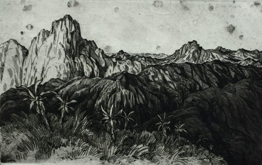 Kunt te koop bij Galerie Wijdemeren, Dick Stolwijk Landschap met bergen en palmbomen ets op papier, 12 x 19,5 cm rechtsonder gesigneerd, oplage 17/25