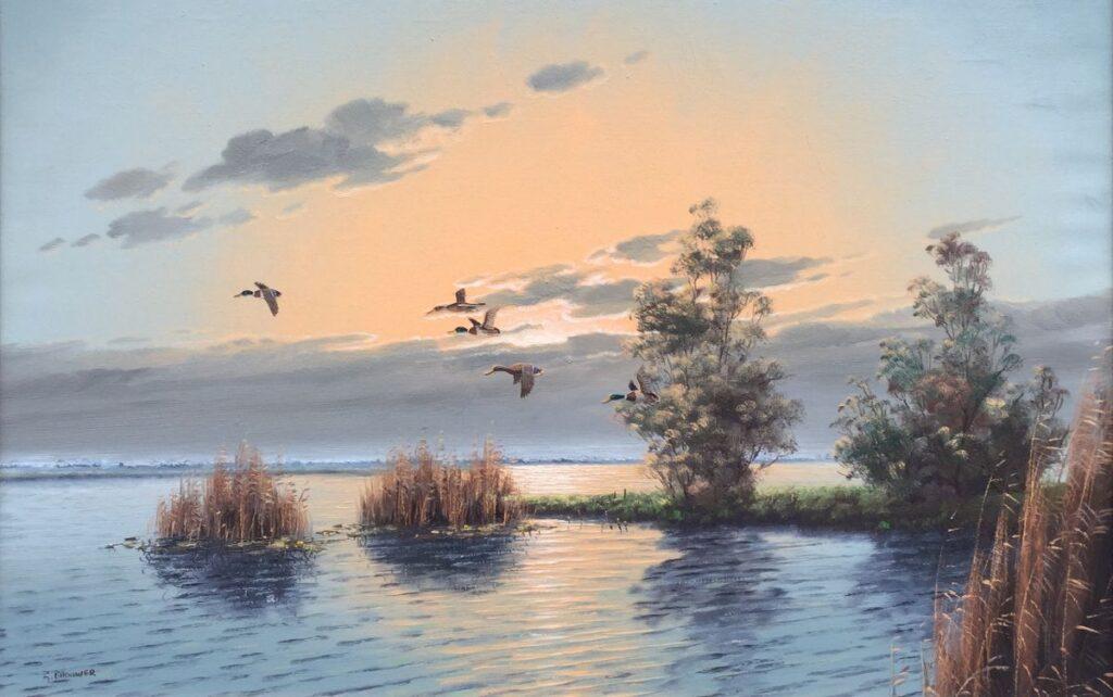 schilderijen te koop van kunstschilder Gien Brouwer plasgezicht met eenden olie op doek, doekmaat 60.5 x 90 cm linksonder gesigneerd, expositie, galerie wijdemeren breukeleveen