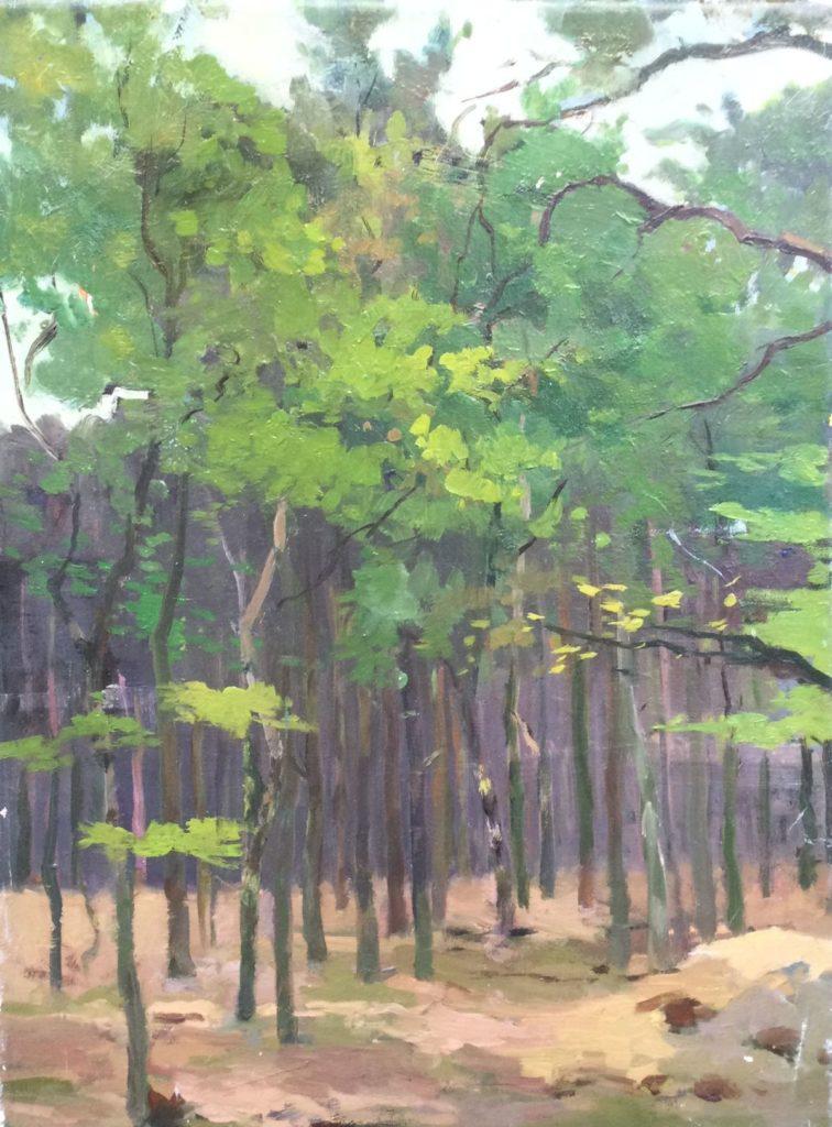 Kunst te koop bij Galerie Wijdemeren van kunstschilder Jacob de Heer Kloots Bosgezicht olie op doek, 40.5 x 30 cm