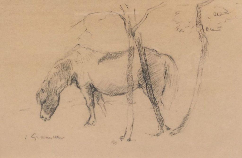 Schilderijen te koop van kunstschilder Jan Groenestein Grazend paard potlood op papier, 25.5 x 37.5 cm linksonder gesigneerd, Expositie Galerie Wijdemeren Breukeleveen