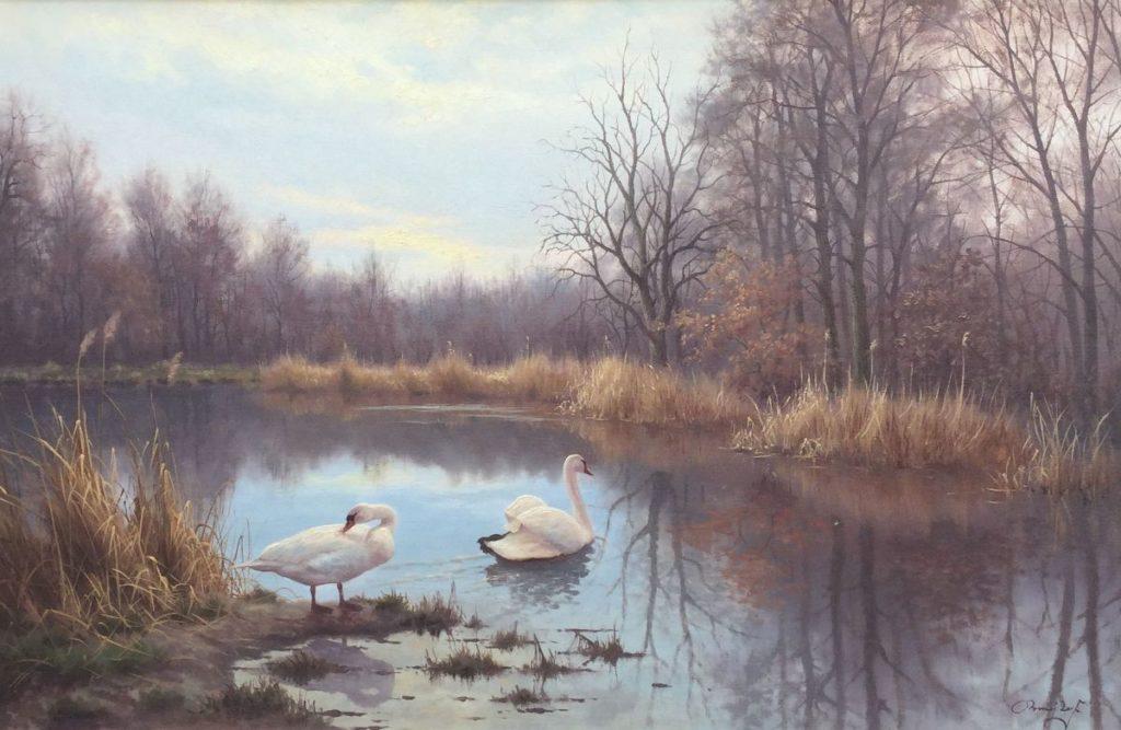 schilderijen te koop van kunstschilder, Ron Meilof Zwanenpaar in polderlandschap olie op doek, doekmaat 60.5 x 90.5 cm rechtsonder gesigneerd, expositie, galerie wijdemeren breukeleveen