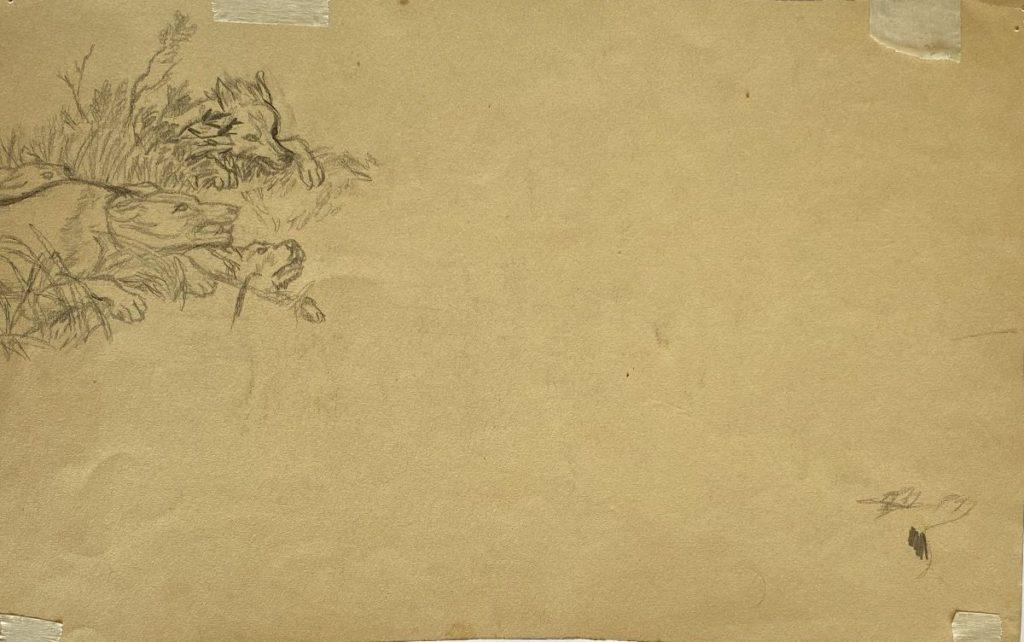 Schilderijen te koop van kunstschilder Rien Poortvliet Het wilde zwijn, verso is een schets te zien potlood en krijt op papier, 21 x 33.5 cm rechtsonder gesigneerd, Expositie Galerie Wijdemeren Breukeleveen