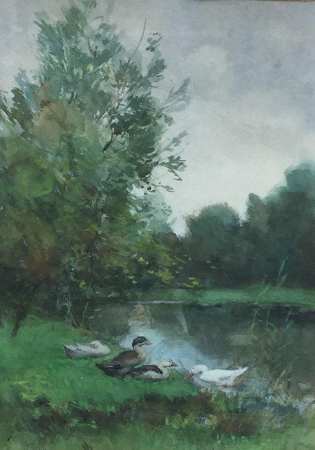 Schilderijen te koop van kunstschilder Constant Artz Eenden aan de waterkant aquarel, beeldmaat 32 x 23 cm linksonder gesigneerd, Expositie Galerie Wijdemeren Breukeleveen