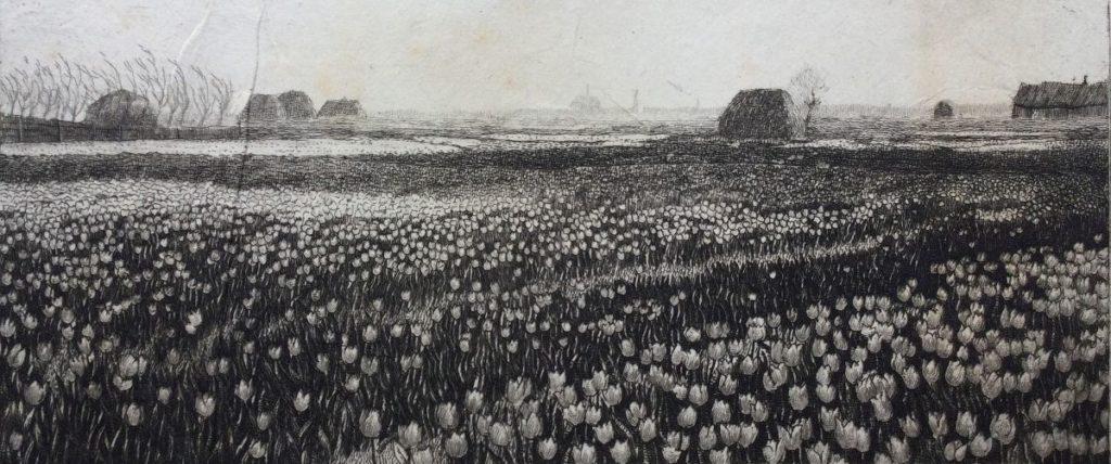 Kunst te koop bij Galerie Wijdemeren van graficus Johannes Graadt van Roggen Tulpenheide Haarlem ets, 7.5 x 15.5 cm verso gesigneerd
