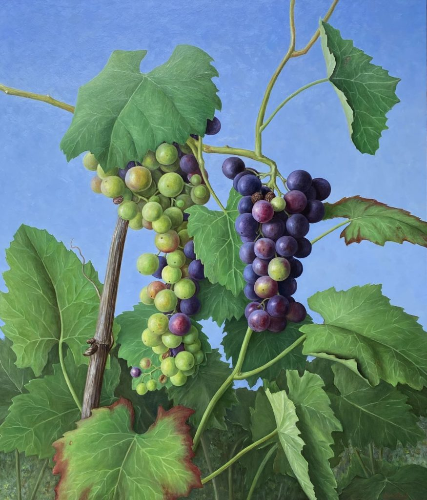 Kunst te koop bij Galerie Wijdemeren van kunstschilder Annelies Jonkhart Druiven uit de Bongerd olie op paneel, 70 x 60 cm rechtsonder gesigneerd