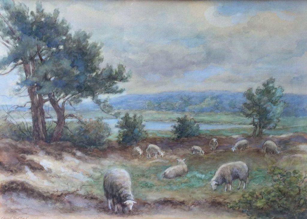 Kunst te koop bij Galerie Wijdemeren van kunstschilder Gerard Koekkoek Schapen op de heide aquarel, beeldmaat 30 x 42.5 cm linksonder gesigneerd