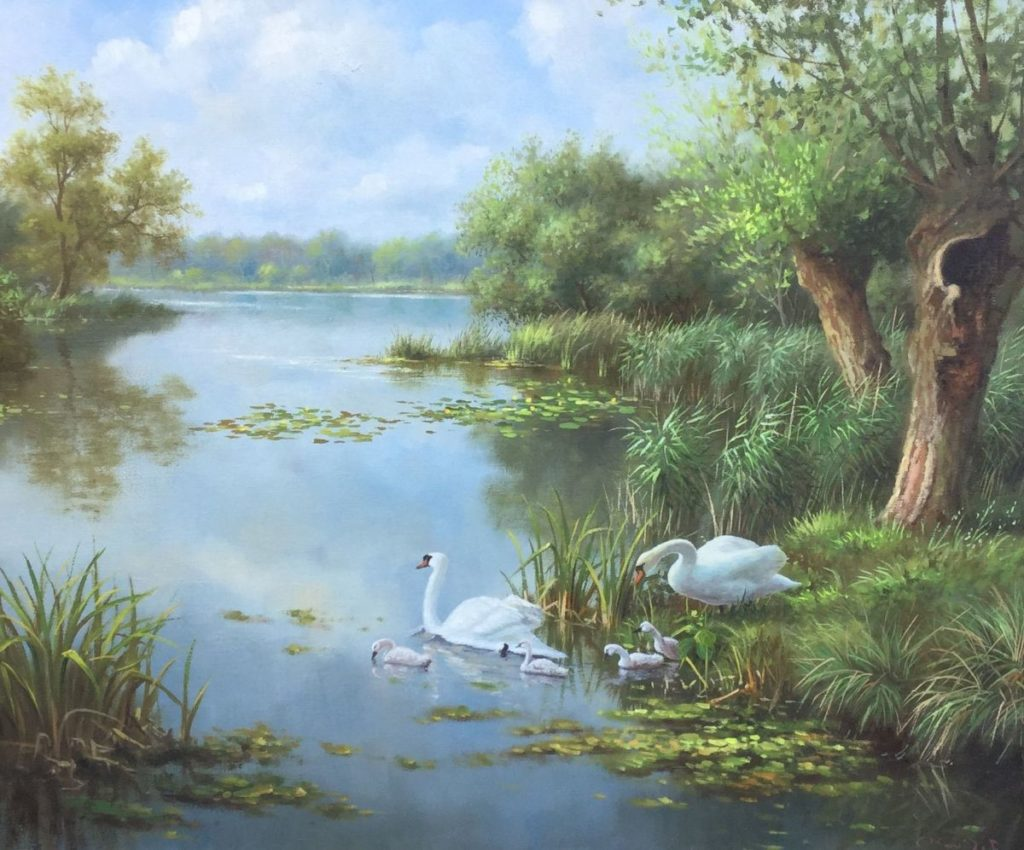 Schilderijen te koop van kunstschilderRon Meilof Zwanenfamilie olie op doek, 50,5 x 60,5 cm r.o. gesigneerd particuliere collectie, Expositie Galerie Wijdemeren Breukeleveen